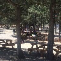 Photo taken at Taşkent Piknik Alanı by Suphi D. on 4/23/2017
