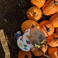 Foto tomada en Clancy's Pumpkin Patch por Brienne Lee B. el 10/14/2018