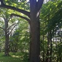 Photo taken at Arboretum in Durand Eastman Park by GraciePgh on 8/13/2017