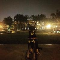 Photo taken at Playa Vista Concert Park by Graceface on 2/14/2016
