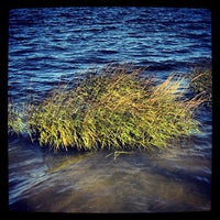 Photo taken at Bayswater Point State Park by Manny G. on 9/23/2013