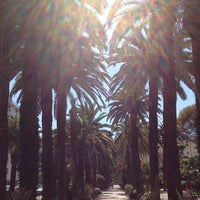 Photo taken at Viale delle Palme by Nick G. on 8/19/2013