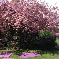5/4/2013 tarihinde Maija M.ziyaretçi tarafından Weinbergspark'de çekilen fotoğraf