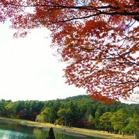 Photo taken at 浄土庭園 by omaidon on 11/13/2013