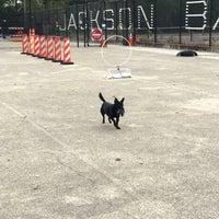 Photo taken at Jackson Bark by David M. on 11/3/2017