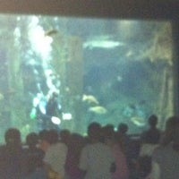 Photo taken at Texas Freshwater Fishery Center by Pam B. on 10/19/2012