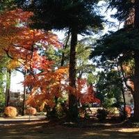 12/6/2012にBAP K.が武蔵陵墓地 (多摩御陵)で撮った写真