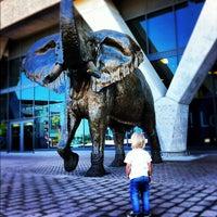 Foto tirada no(a) Aeroporto International da Cidade do Cabo (CPT) por Justin R. em 11/6/2012