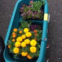 Photo taken at Maplewood Garden Club Plant Sale by Ann M. on 5/10/2014