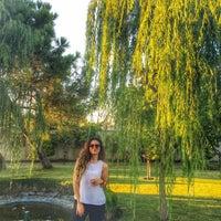 Photo taken at Gülden's Garden by Cansu Ş. on 7/18/2016