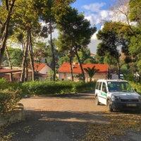 12/11/2017 tarihinde Şeyhmus Ş.ziyaretçi tarafından İzmir Büyükşehir Belediyesi Zübeyde Hanım Huzurevi'de çekilen fotoğraf