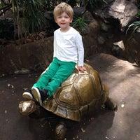 Photo taken at Minnesota Zoo by Morgan Z. on 10/20/2013