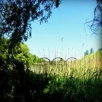 Photo taken at Kis-Balaton by Gergő F. on 5/5/2014