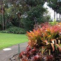 Foster botanical gardens downtown honolulu honolulu hi for Foster botanical garden honolulu
