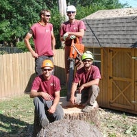 Photo taken at All About Trees by All About Trees on 12/3/2014