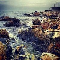 Снимок сделан в İnciraltı Sahili пользователем Kaan I. 12/18/2012