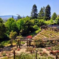photo taken at berkeley rose garden by louis on 5172013 - Berkeley Rose Garden