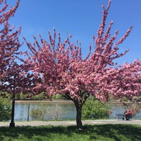 Photo taken at Rainey Park by Seiji C. on 4/24/2016