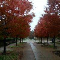 Photo taken at St. Louis Community College-Meramec by Claudia J. on 10/29/2013