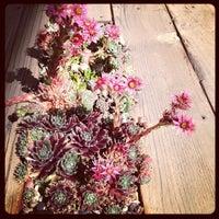 Foto tirada no(a) Flora Grubb Gardens por Adam S. em 9/30/2012