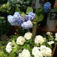 Photo taken at Aoyama Flower Market by ayaco on 6/3/2016