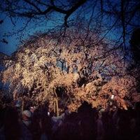 Снимок сделан в Rikugien Gardens пользователем KMY 3/22/2013