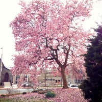 Photo taken at Willard Hall Education Building #UDel by Mu H. on 4/11/2013