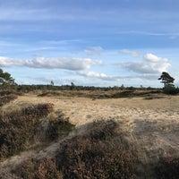 Photo prise au Nationaal Park Drents-Friese Wold par Sander Z. le10/7/2018