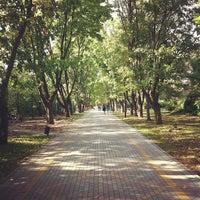 Снимок сделан в Ботанический сад КубГАУ им. И.С. Косенко пользователем Ruslan Y. 9/29/2012