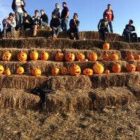 Photo taken at Bob's Pumpkin Patch by Patrick Y. on 10/25/2013