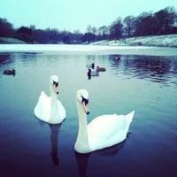 Photo taken at Sefton Park by Alexei B. on 1/20/2013