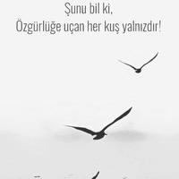 Photo taken at Kuşadası - Selçuk Yolu by Gizem A. on 7/3/2017