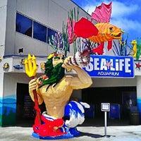 Photo taken at SEA LIFE Aquarium by Milton on 5/9/2013