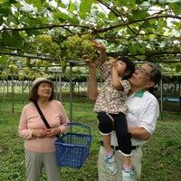 9/8/2013 tarihinde はる マ.ziyaretçi tarafından 坂上ぶどう園'de çekilen fotoğraf