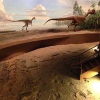 Photo taken at Dinosaur State Park by Chris M. on 4/12/2014