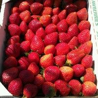 Photo taken at Sarasota Farmers Market by Jack L. on 3/16/2013