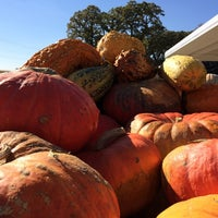 Photo taken at Pearce's Farm Stand by Lynn M. on 10/11/2014