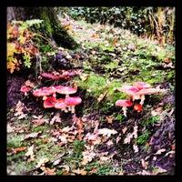 Photo taken at Park Lage Vaartkant by Enrico V. on 10/20/2012