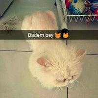 Photo taken at aydın veteriner kliniği-aydın by Gökçen B. on 7/19/2016