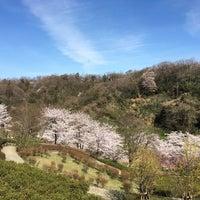 Photo taken at 卯辰山 花木園 by Kenichiro F. on 4/5/2016