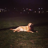 Photo taken at Parque Canino by Rodrigo B. on 2/16/2013