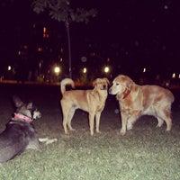 Photo taken at Parque Canino by Rodrigo B. on 2/23/2013