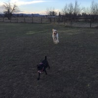 Photo taken at Soft Gold Dog Park by Cosmo C. on 3/23/2016