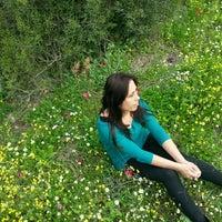 Photo taken at zeytindag tek çam manzara by Bircan D. on 3/27/2016