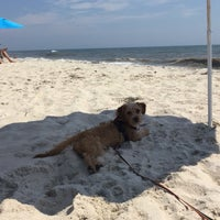 Photo taken at Fire Island Pines Beach by Peter S. on 8/26/2016