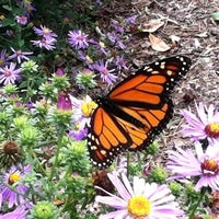Photo taken at North Carolina Botanical Gardens by Allison D. on 10/14/2012