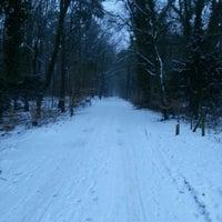 Photo taken at Hondenlosloopgebied by Herman O. on 1/16/2013