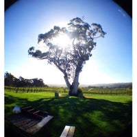 Photo taken at Nepenthe Wines by Erick C. on 9/26/2013