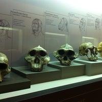 Foto tomada en Museu d'Arqueologia de Catalunya por İdil Ö. el 5/29/2013