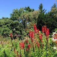 รูปภาพถ่ายที่ Shakespeare Garden โดย Dominic G. เมื่อ 8/24/2013